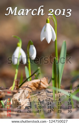 2013 Calendar. March. White snowdrops through the old grass - stock photo