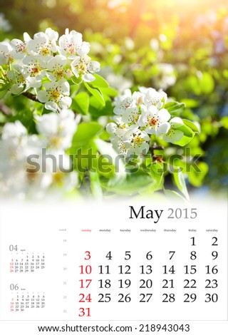 2015 Calendar. May. Blossom apple tree in the sunlight - stock photo