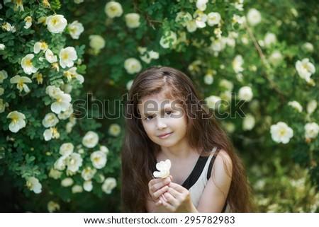 child  girl   near the rose bushes - stock photo