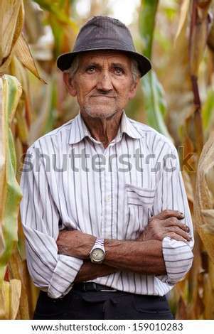Closeup of old man with arms folded in the cornfield - stock photo