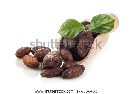 Cocoa beans with leaves on the wooden scoop isolated on white background - stock photo