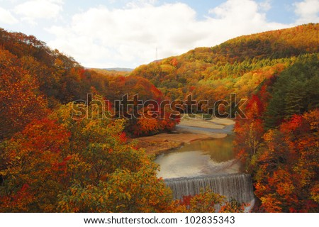 colorful  leaves and stream  in Gully  Matsukawa - stock photo