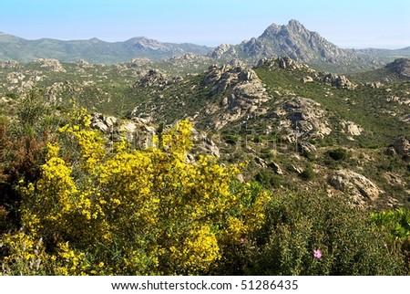 Corsica, landscape of Agriates - stock photo