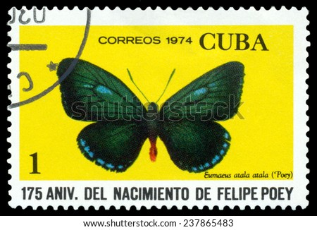 CUBA - CIRCA 1974: A stamp printed in Cuba shows butterfly Eumaueus atala atala, series Felipe Poey, circa 1974.  - stock photo