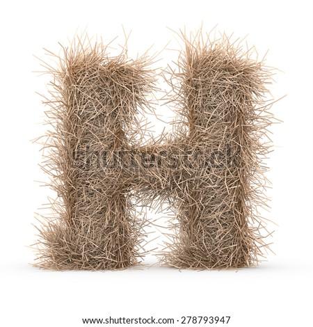 3d decorative nature letter H - stock photo