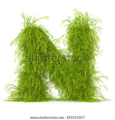 3d decorative nature letter N - stock photo