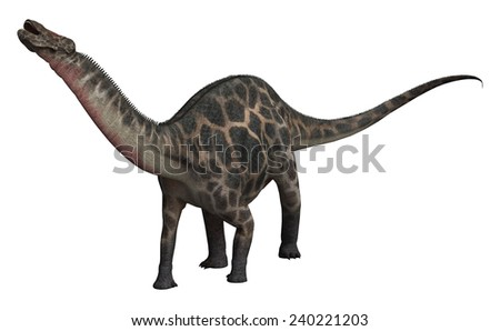 3D digital render of  a dinosaur Dicraeosaurus isolated on white background - stock photo