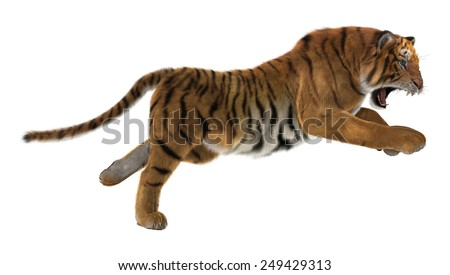 3D digital render of a hunting big cat tiger isolated on white background - stock photo