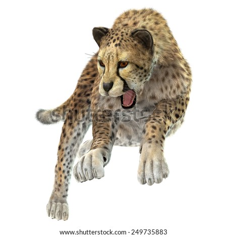 3D digital render of a hunting cheetah isolated on white background - stock photo