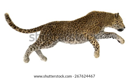 3D digital render of a jumping leopard isolated on white background - stock photo
