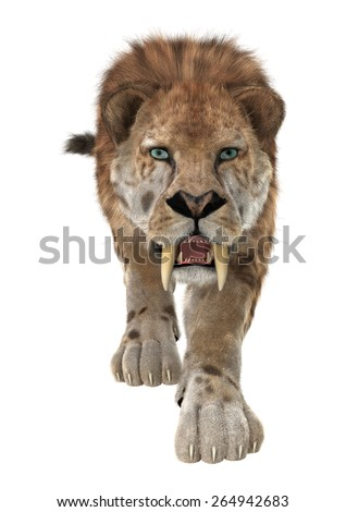3D digital render of a smilodon or a saber toothed cat isolated on white background - stock photo