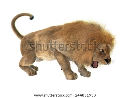3D digital render of an angry roaring male lion isolated on white background - stock photo