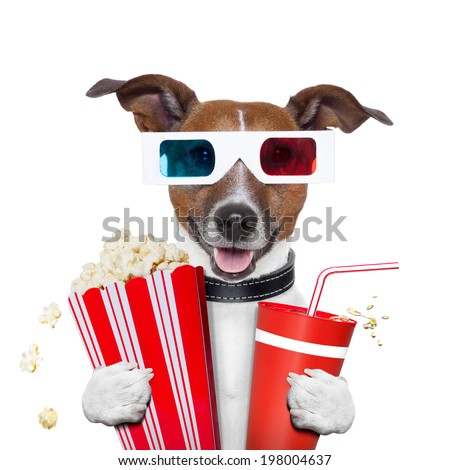 3d glasses movie popcorn dog watching a film - stock photo