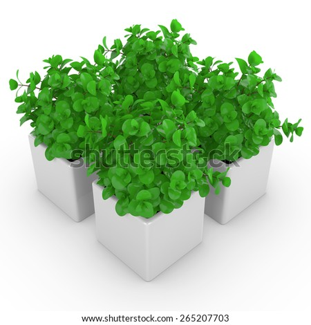 3d houseplants in a vases. Group of isolated objects - stock photo