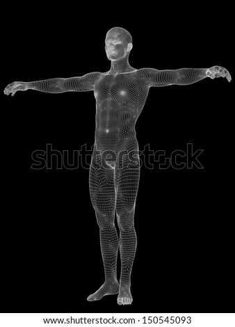 3D human or male anatomy made of white wireframe or mesh, a man isolated on black background - stock photo