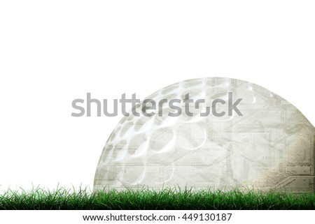 3d illustration of a golf ball on green grass isolated on white background - stock photo