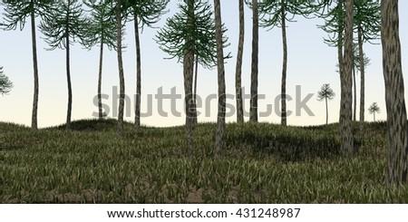 3d illustration of the araucaria grove - stock photo
