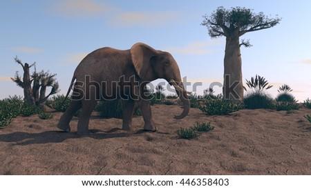 3d iluustration of the elephant walking near baobab tree - stock photo