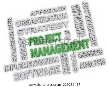 3d image project management issues concept word cloud background - stock photo