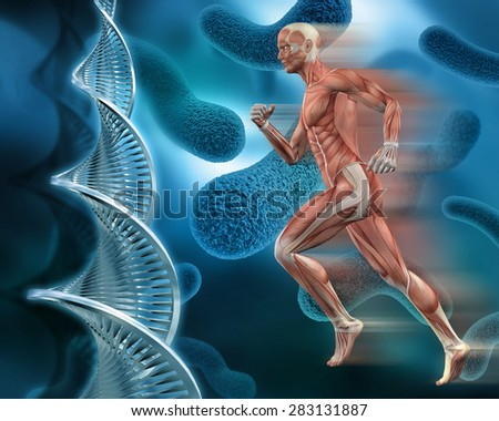 3D male medical figure with muscle map on an abstract virus background with DNA strands - stock photo