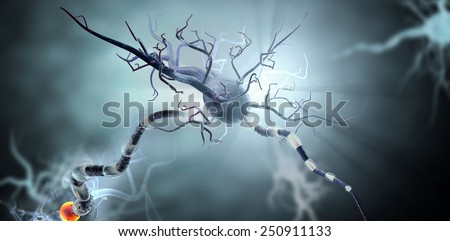 3d medical illustration, nerve cells. Neurons concept for Neurological Diseases, tumors and brain surgery.  - stock photo