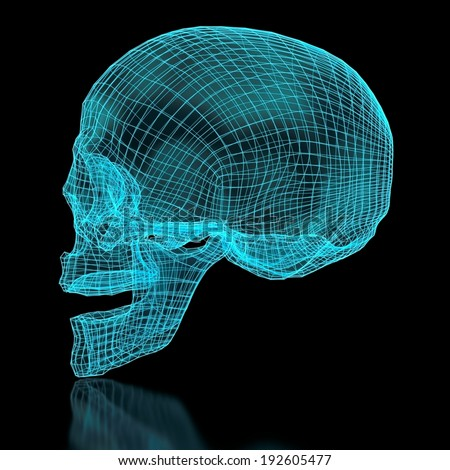 3D mesh skull in blue color. Side view. Part of a series. - stock photo