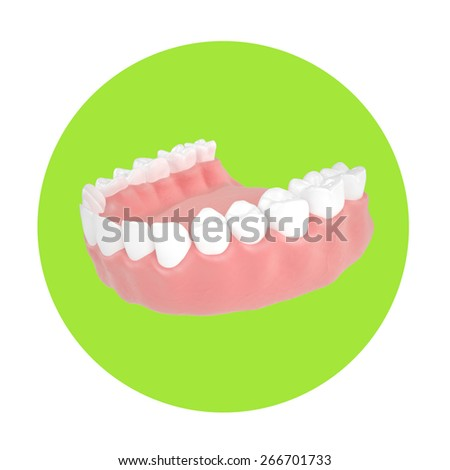 3d render human jaw in a beautiful perspective on green - stock photo