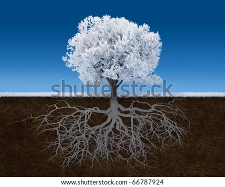 3d render illustration of a white tree with root - stock photo