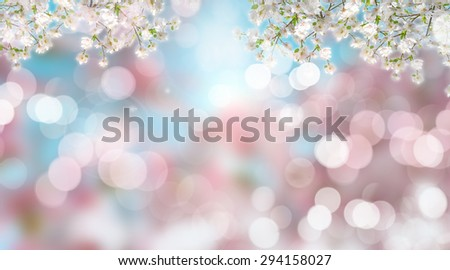 3D render of cherry blossom on a defocussed background - stock photo