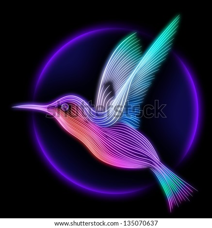 3d render of colibri bird - hummingbird striped silhouette - stock photo
