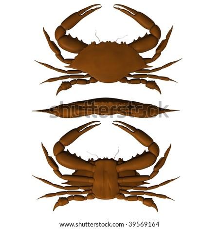 3d render of crab animal - stock photo