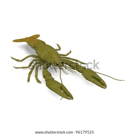 3d render of crustacean animals-crayfish - stock photo