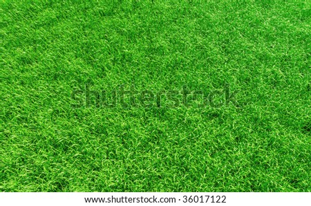 3D render - perfectly clean grass background. - stock photo