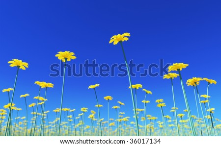 3D render - yellow flowers field with view form below; high quality depth of field effect (lens blur; DOF) - stock photo