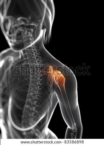 3d rendered anatomy illustration - painful shoulder - stock photo