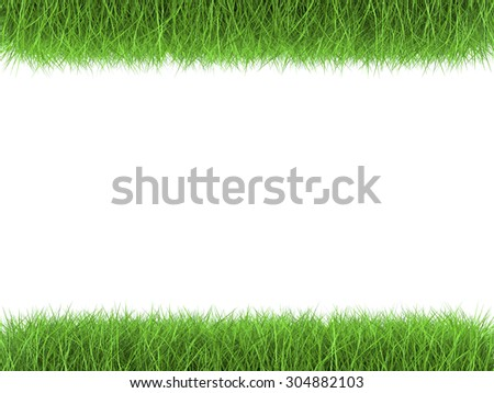 3d rendered green grass parallel on white background - stock photo