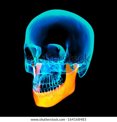 3d rendered illustration - jaw bone - side view - stock photo