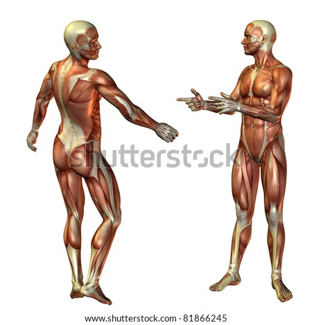 3D Rendering Muscle Man Standing - stock photo
