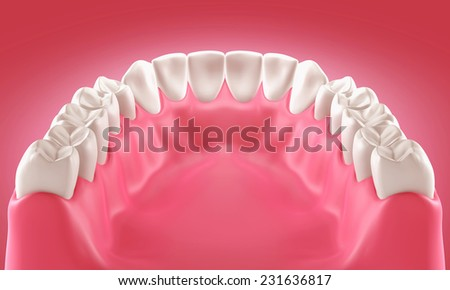 3D teeth or tooth illustration, back view - stock photo