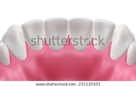 3D teeth or tooth illustration, inside view isolated - stock photo