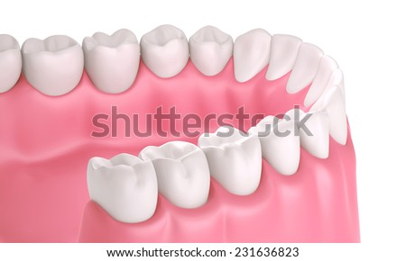3D teeth or tooth illustration, perspective view in mouth isolated  - stock photo