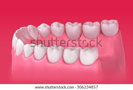 3D teeth or tooth illustration, side view - stock photo