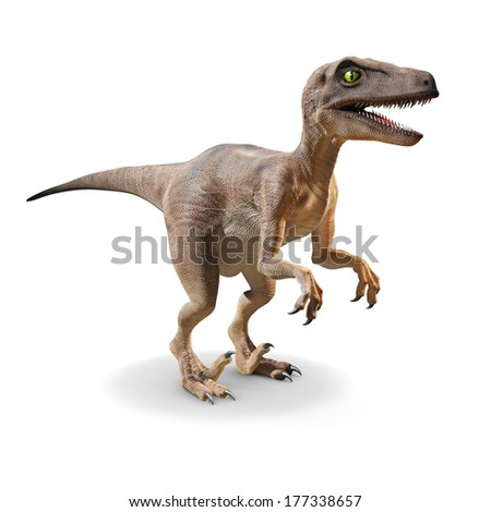 3d Velociraptor front view - stock photo