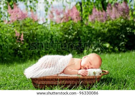 0-7 deys baby. New born baby, sleeps in basket , outdoor. - stock photo
