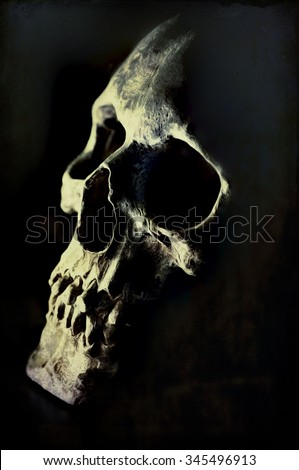 Digital art, paint effect, Close up of cracked and damaged human skull                               - stock photo