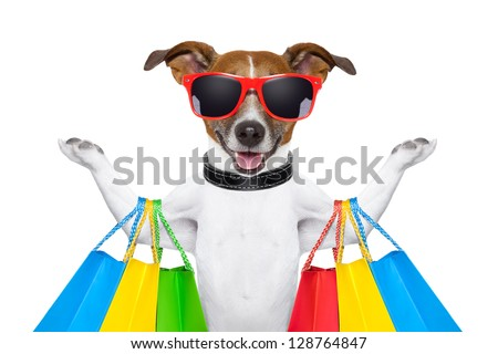 dog with shopping bags - stock photo