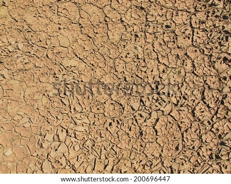 Dry  cracked clay of wheat field. Dusty ground with deep cracks - stock photo