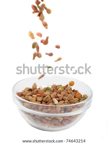 Dry dog food in a black dog dish, isolated on white. - stock photo