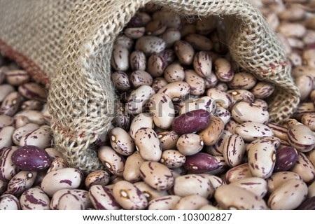 Dry Pinto beans in small bag - stock photo