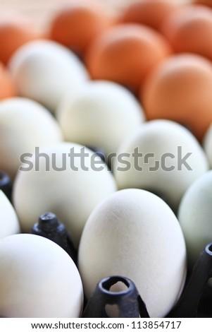 egg in carton box - stock photo